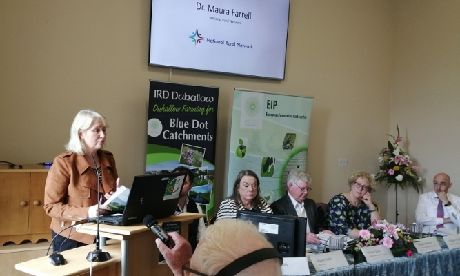 Maura Farrell (NUIG) gave an insight into the importance of EIPs across the EU