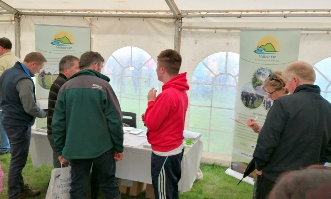 Visitors to the Mulkear EIP stand at the Cappamore Show