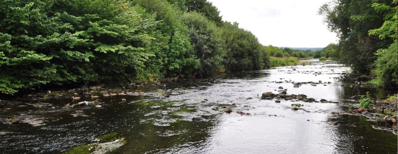 river-allow-duhallow-01